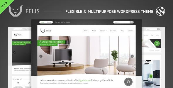 Felis - Themeforest Flexible & Multipurpose WP Theme - Wordpress ...