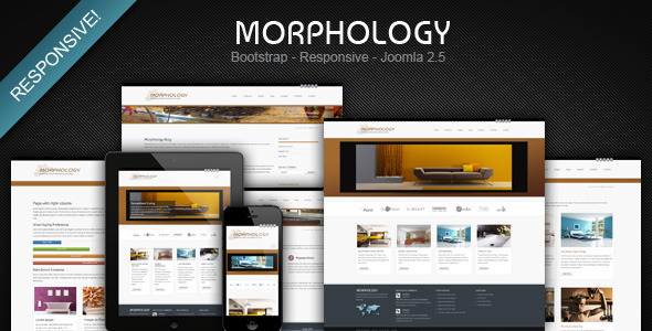 Morphology responsive joomla business template joomla themeforest morphology responsive joomla business template fbccfo Image collections