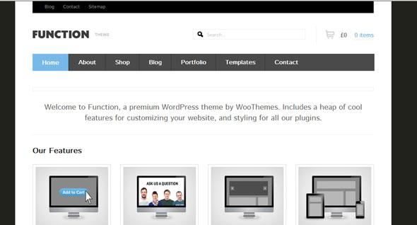 Function - WooThemes Wordpres Template - Wordpress :: WooThemes